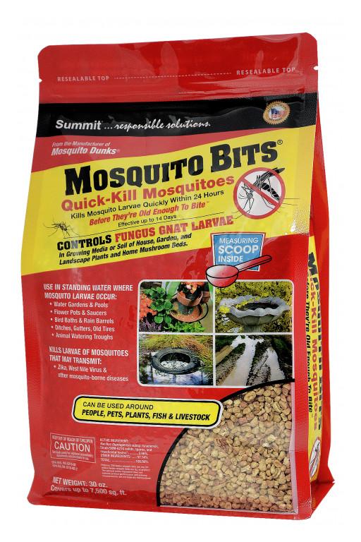 Kill Fungus Gnats on Houseplants With BTI