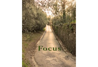Focus Word of the Year