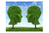 Tree Lending Group