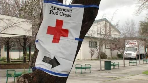 Purple Lotus Donates Proceeds to San Jose Flood Relief