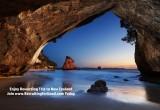 Enjoy Rewarding Trips to New Zealand