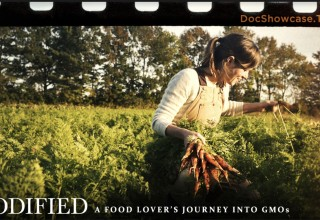 Award-winning documentary filmmaker, organic gardener and popular blogger
